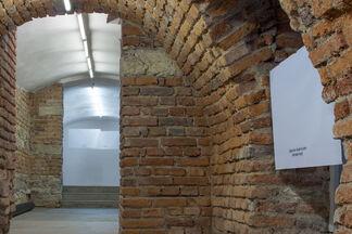 Hanne Lippard: *ahem*, installation view