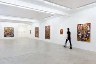 Maya Weishof | Mirroring Astonishing, installation view
