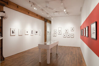 Eikoh Hosoe: Curated Body 1959-1970, installation view