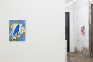 Snowbirds, installation view