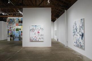 SHIFT: Karen Carson, Kim Dingle, Iva Gueorguieva, Elisa Johns, installation view