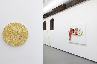 Ravishing Far/Near: Sheila Gallagher, installation view