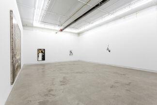 Dorian FitzGerald: Weltverbesserungssyndrom, installation view