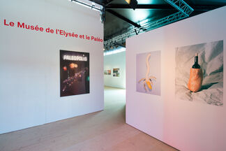 Another Look at Paléo, installation view