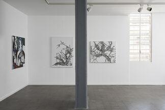Post Human, installation view