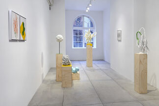 Paul Sacaridiz, installation view