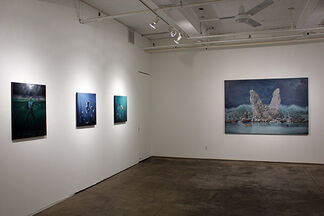 Joel Rea - Beasts of Arcadia, installation view