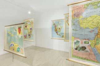 Servet Koçyiğit: WHEN THE LION COMES OUT OF THE SHADE, installation view