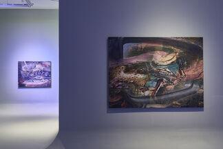 "Ry David Bradley ""Search History"", installation view"