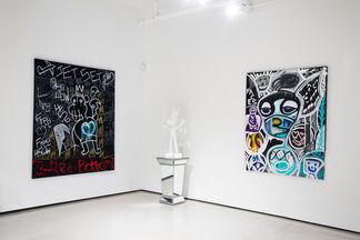 Zevi G & Martin Schapira, installation view