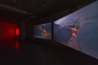Christopher Richmond - Double In Brass, installation view