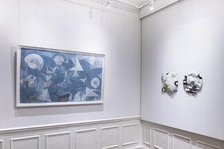 Anima Mundi, installation view