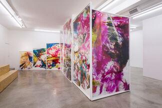 Mariah Robertson: Photography Lovers' Peninsula, installation view