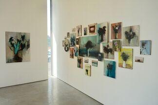 Kobi Assaf | Dis-Play, installation view