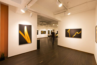 Park Ji Ho Solo exhibition <I Moved the Moon by Myself!>, installation view