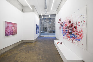 Topography, installation view