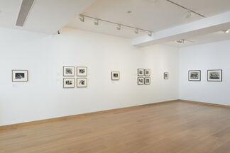 Rodin, Brancusi, Moore: Through the Sculptor's Lens, installation view