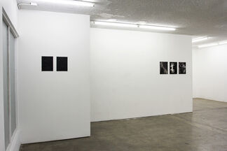 KANDIS WILLIAMS / DISFIGURING TRADITIONS, installation view