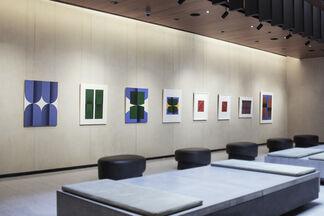 Senem Oezdogan at Gotham West, New York, installation view