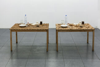 Pravdoliub Ivanov - Neglectable Incidents at the Level of the Eyes, installation view