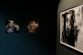 The Chosen Form of Your Destroyer, installation view