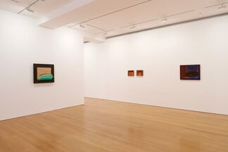 Howard Hodgkin: In the Pink, installation view