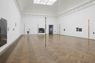 """Joanna Piotrowska: """"Stable Vices"""", installation view"""