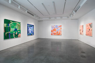 TAHNEE LONSDALE | Pipe Dreams and Rabbit Holes, installation view