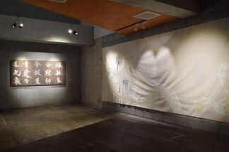 "Souun Takeda solo exhibition ""Shinka"", installation view"