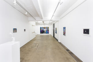 Tom LaDuke: New Work, installation view