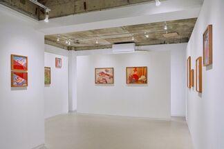 KANA KAWANISHI GALLERY at Photo London 2020, installation view