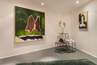 The Psychology of Visual Pleasure, installation view