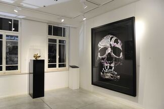 BEAUTY AND UGLINESS, installation view