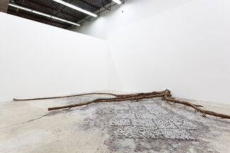 Death of a Printed Story- Fabian Peña, installation view