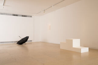 Hiding Wood in Trees: Wilfredo Prieto and Ariel Schlesinger, installation view