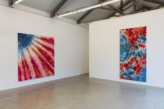 Red, White and Blue - Piotr Uklanski, installation view