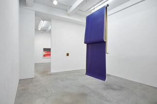 The Whole Picture, installation view