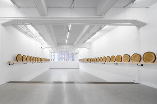 Xavier Veilhan CEDAR, installation view