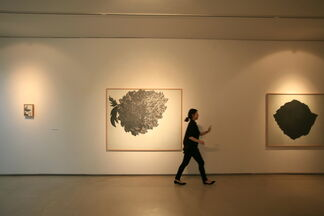 Drawing Woman, installation view