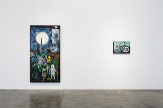 David Harrison : Flowers of Evil, installation view
