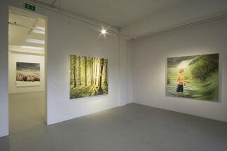 Bernard Ammerer - Dreamer, installation view
