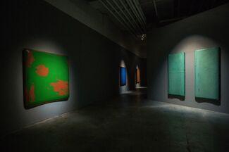 Xiaobai Su: 2012 - 2014, installation view