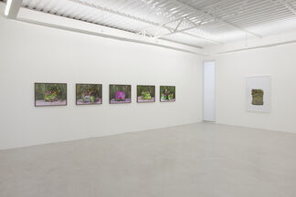 Transportable Landscapes . Cover, installation view
