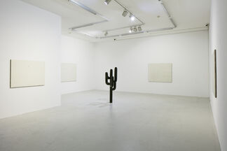 Vincent Szarek - The hollow earth theory, installation view