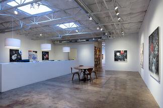 Vernon Fisher: Dark Waves Rising, installation view