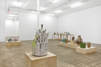 Clippings and Hard Fruit, installation view