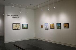 Kate Samworth's Antidotes Series, installation view