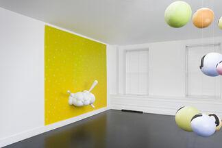 Nancy Dwyer, installation view