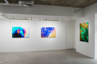 KANA KAWANISHI at Unseen Photo Fair 2015, installation view