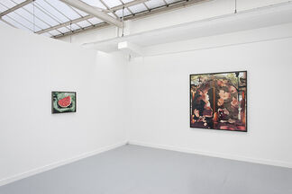 Lucas Blalock: A Farmer's Knowledge, installation view